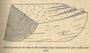 spiral grain from how to work with tools and wood 1952