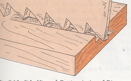 action of wedge-shaped cutting edges